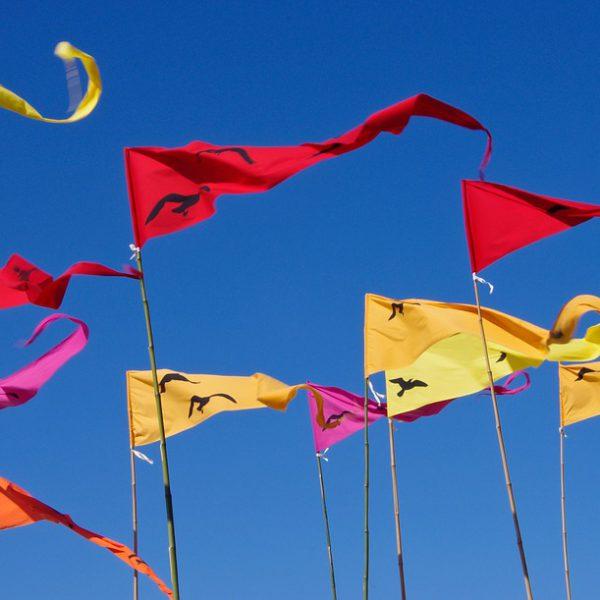 Le drapeau un support de communication efficace